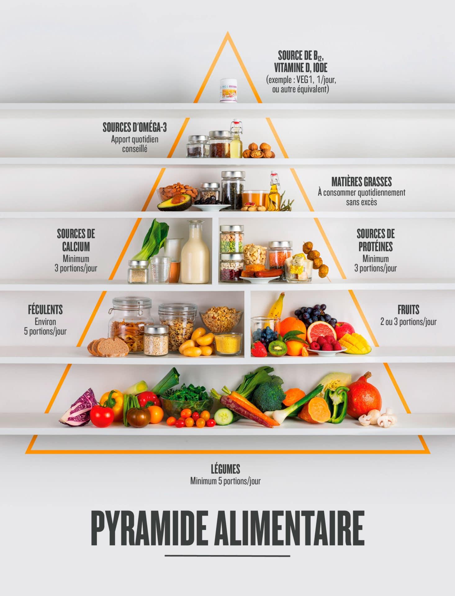 schema aliments clés