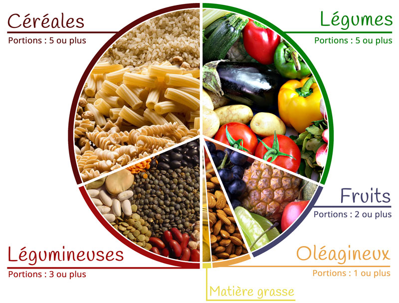 Aliments cl s fiche nutrition vegan pratique - Legumes riches en proteines ...