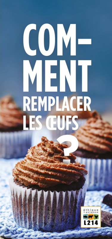 Tract Comment remplacer les oeufs